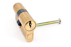 Brass cartridge cylinder Royalty Free Stock Photo