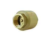 Brass Check Valve isolated on white Background Clipping paths Stock Image