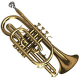 Brass Cornet Stock Photography