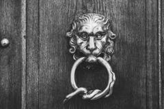 Brass doorknocker, lion head and snake loop design, black and white royalty free stock images