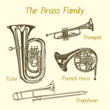 Brass family illustration. Vector illustration of hand drawn brass family instruments. Beautiful ink drawing of tuba, trumpet, trombone and french horn Stock Images