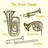 Brass family illustration Stock Images