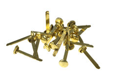 Brass fasteners. Group head fasteners in brass on a white background stock images