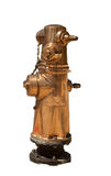 Brass Fireplug Stock Image