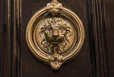 Brass knocker  on the brown door. Brass knocker in the shape of a lion`s head on the brown door Stock Photos