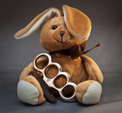 Brass Knuckle Teddy Bear. Cute teddy bear sitting with a pair of brass knuckles royalty free stock image