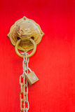 Brass lion head door knocker Royalty Free Stock Photo