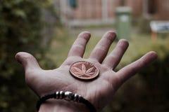 Brass marijuana coin Royalty Free Stock Photos