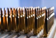 Brass metal bullet cartridge close-up  gauge caliber Royalty Free Stock Photography