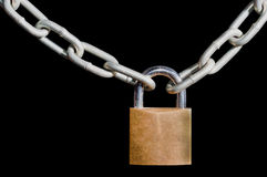 Brass padlock and chain on black Stock Images