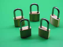 Brass padlocks. On green background Stock Photos