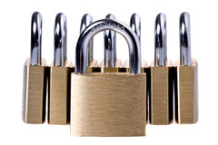 Brass padlocks on a white background. Eight Brass padlocks on a white background Royalty Free Stock Photography