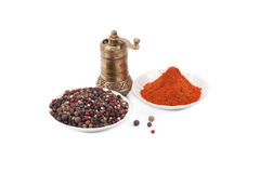 Brass pepper mill and spices Stock Images