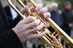 Brass Player Stock Image