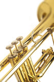 Brass Trumpet. On a white background stock photos
