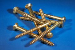 Brass wood screws Stock Photo