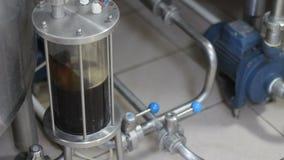 Brassage de bière de métier Filtration de bière brassée Équipement de brassage dans l'action Plan rapproché clips vidéos