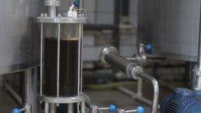 Brassage de bière de métier Filtration de bière brassée Équipement de brassage dans l'action Plan rapproché banque de vidéos