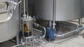 Brassage de bière de métier Filtration de bière brassée Équipement de brassage dans l'action Réservoirs pour le brassage clips vidéos