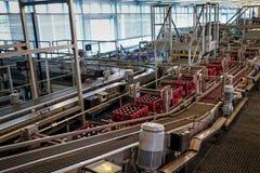 Brasserie de Budvar Budweiser Mettez le tri, le lavage et l'atelier en bouteille de bouteille à bière avec des ensemble-lignes Images stock