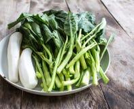 Brassica alboglabra Stock Images