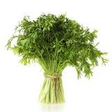 Brassica juncea Stock Afbeelding