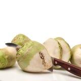 Brassica juncea foto de archivo libre de regalías