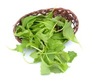 Brassica juncea leaves Stock Photo
