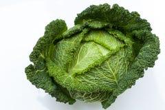 Brassica oleracea Immagini Stock