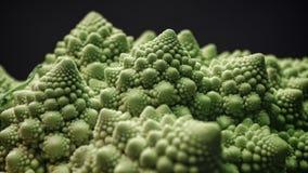 Brassica oleracea, bróculi de Romanesco imagenes de archivo
