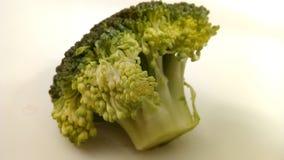 Brassica Oleracea - Brokkoliblume stockbild