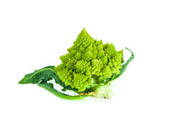 Brassica Oleracea / Romanesco broccoli / Roman cauliflower Stock Images
