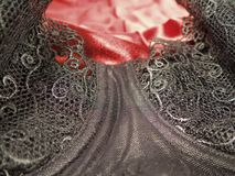 Brassiere Royalty Free Stock Images