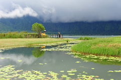 Bratan Lake in Bali, Indonesia Stock Images