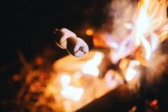 Brateibische auf einem Stock über einem offenen Lagerfeuer lizenzfreie stockfotografie