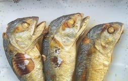 Braten Sie die Makrele, die das Lebensmittel dringend ist Stockbild
