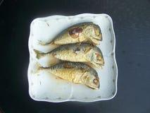 Braten Sie die Makrele, die das Lebensmittel dringend ist Lizenzfreie Stockfotos