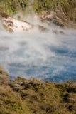 Braten von Pan Lake in Rotorua lizenzfreie stockbilder