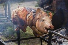 Bratferkel, gegrilltes Schwein am Straßenlebensmittelmarkt in Thailand Abschluss oben Lizenzfreies Stockfoto