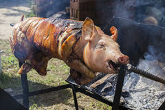 Bratferkel, gegrilltes Schwein am Straßenlebensmittelmarkt in Thailand Abschluss oben Lizenzfreie Stockfotos