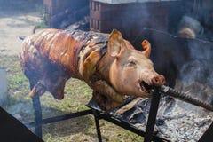 Bratferkel, gegrilltes Schwein am Straßenlebensmittelmarkt in Thailand Abschluss oben Stockfoto