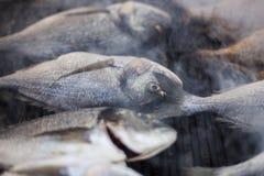 Bratfisch - Fisch auf dem Grill Stockbild