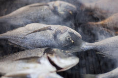 Bratfisch - fish on the grill Stock Image