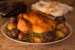 Brathähnchen-Abendessen lizenzfreie stockbilder