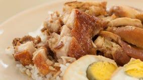 Brathähnchen und knusperiges Schweinefleisch mit Reis und gekochtem Ei lizenzfreie stockfotografie