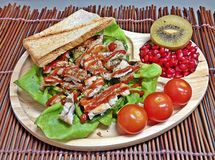 Brathuhn und Tomatensalat Lizenzfreies Stockfoto