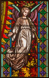 Bratislava - Angel from windowpane on west portal of st. Matins cathedral  from 19. cent. Royalty Free Stock Photos