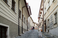 Bratislava architecture Royalty Free Stock Images