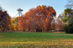 Bratislava city park in autumn Stock Photography
