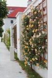 Bratislava roszuje - pięknego baroku ogród przy jeden grodowi jardy obraz stock